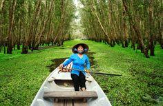 Vietnam's Top 12 Experiences Vietnam Voyage, Vietnam Travel, Asia Travel, Le Vietnam, South Vietnam, Mekong Delta Vietnam, Delta Du Mekong, Backpacking India, Backpacking South America