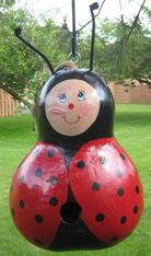 Miss Lady Bug Hand-Painted Gourd Birdhouse