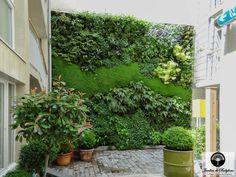 Aménagement Jardin : Hôtel Jules Et Jim Paris