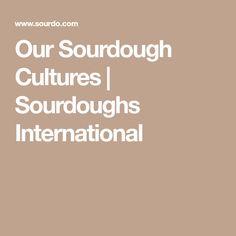 Our Sourdough Cultures | Sourdoughs International
