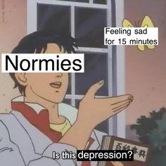 Normans = HITLER