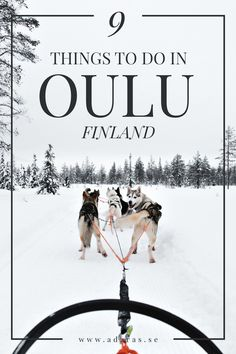 suomi oulu chat where to meet