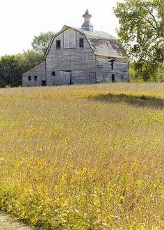 Rural America Greeting Card by Christine Belt Country Barns, Country Life, Country Roads, Country Living, Amish Barns, Farm Barn, Old Farm, American Barn, American Quilt