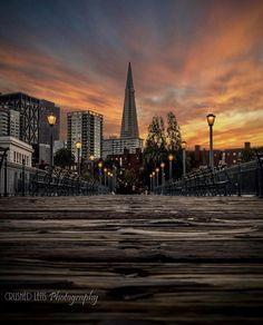 Transamerica Pyramid, San Francisco Skyline, New York Skyline, Street, Travel, Brown, Viajes, Destinations, Brown Colors