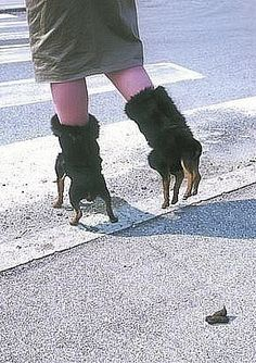 Interesting and Funny World: Crazy Shoes/ wtf?i'll give you a hint though: the shoes = *our childhood* Funny Walmart Pictures, Walmart Funny, Funniest Pictures, Fashion Fail, Fashion Shoes, Weird Fashion, Crazy Shoes, Me Too Shoes, Weird Shoes