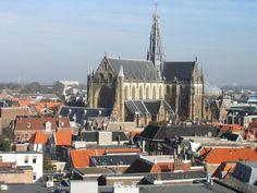 bavo haarlem | St Bavo Kerk, Haarlem