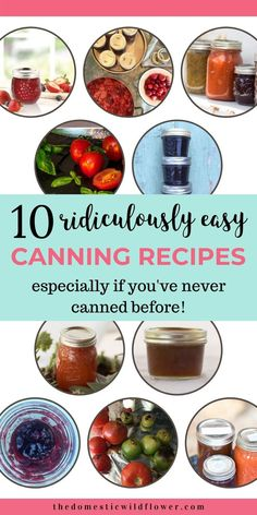 10 Easy Canning Recipes with step by step instructions for water bath and steam canning. Learn how to make jam, applesauce, peach sauce and ranch style salsa. These recipes are perfect for a beginner or an experienced canner Easy Canning, Canning Tips, Canning Recipes, Canning Salsa, Canning Pressure Cooker, Using A Pressure Cooker, Pressure Cooking, Canning Applesauce, Homemade Applesauce