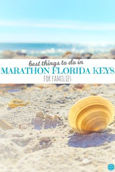 4 MUST-SEE Things to Do in Marathon Florida Keys for Families! Marathon Florida images, video, and BEST Marathon travel tips for sightseeing with kids. Marathon Florida Keys, Marathon Key, Marathon Travel, Winter Springs Florida, Best Spring Break Destinations, Florida Travel Guide, Florida Images, Stuff To Do, Things To Do