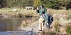 annamoe_fishery_main Local Attractions, Maine, Tourism, Activities, Turismo, Travel, Traveling