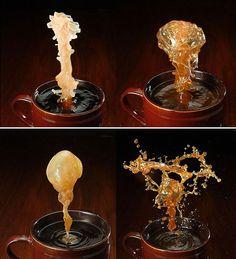 Dark Roasted Blend: Coffee Art & Style Extravaganza