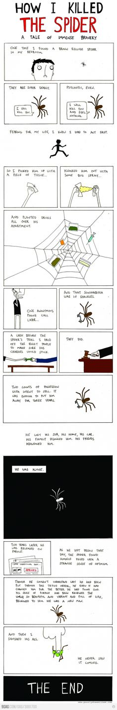 How I killed the spider