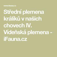 7d91b2c1bd8 Střední plemena králíků v našich chovech IV. Vídeňská plemena - iFauna.cz