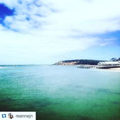 Beautiful photo and thoughts from @reannejn   How good is this country? This state? This region?  #barwonheads #geelong #victoria #australia #visitvictoria #surfcoast #beach #river #attheheads #weekend #happy #lovewhereyoulive #repost  #aguideto #aguidetobarwonheads #smallbusiness #shoplocal #livelovelocal #instagood #photography #ocean #beach #surf #fun  #oceangrove #bellarine #bellarinepeninsula #tourismgeelong #seeaustralia by a_guide_to_barwonheads http://ift.tt/1JO3Y6G
