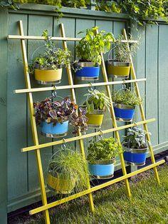 Herb Garden planted in buckets, hanging herb garden