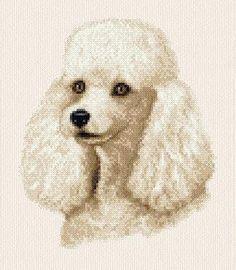 Google Image Result for http://www.dogwoodkennel.org/White-Poodle-cross-stitch.jpg