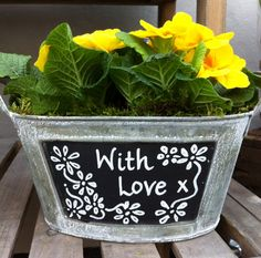Washboard planter with pretty primrose £9.50 at Garden Planters Shop  http://www.gardenplantersshop.co.uk/oval-blackboard-planter_p261.aspx