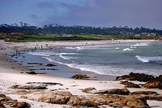 Asilomar State Beach, Pacific Grove, CA Burke loves this beach! Great Places, Beautiful Places, Places To Travel, Places To Visit, Monterey Peninsula, Monterey Ca, California Trip, Fun List, Central Coast