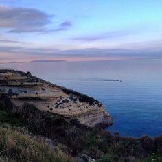 by http://ift.tt/1OJSkeg - Sardegna turismo by italylandscape.com #traveloffers #holiday | #balai#mare#sea#sardegna#sardinialandscape#igersardegna#volgosardegna#lanuovasardegna#sardegnaofficial#sardegna_super_pics#vivosardegna#portotorres#parsaggi#sardegnaexperience Foto presente anche su http://ift.tt/1tOf9XD | January 28 2016 at 09:42AM (ph gian__86 ) | #traveloffers #holiday | INSERISCI ANCHE TU offerte di turismo in Sardegna http://ift.tt/23nmf3B -