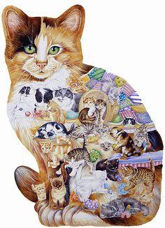 plaatje van een kat