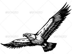 Eagle Vector  #GraphicRiver         Eagle Vector  	 Pack include: EPS (eps8-10), PSD,(layered,RGB), AI, (ai10), JPEG files.                     Created: 11 December 13                    Graphics Files Included:   Photoshop PSD #JPG Image #Vector EPS #AI Illustrator                   Layered:   No                   Minimum Adobe CS Version:   CS             Tags      ascend #bald eagle #bird #descent #drawing #eagle #falcon #fauna #flight #flyer #flying #fowl #freedom #hand drawn #hawk…