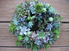 Succulents are my favorite. I can't wait to grow one of these.