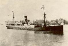 COMMEWIJNE Eigenaar : Koninklijke Nederlandsche Stoomboot Maatschappij N.V. Werf : Akt. Burmeister & Wain's A/S, Kopenhagen / 257 http://vervlogentijden.blogspot.nl/search?q=COMMEWIJNE