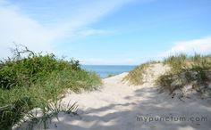 Wir wollen an die See. Beach, Water, Outdoor, Exotic Flowers, Water Water, Outdoors, Aqua, Seaside, Outdoor Life