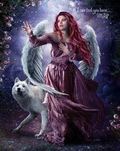 Angel wings & Wolf