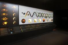 Origin of Life Timeline, exhibit installation