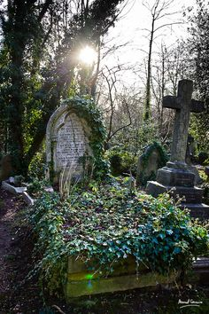 Highgate Cementery by Manuel Couceiro Highgate Cemetery, Cemetery Statues, Cemetery Headstones, Old Cemeteries, Cemetery Art, Graveyards, Gardens Of Stone, Gothic Garden, Catacombs