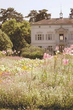 This house is stunning and having a meadow of wildflowers out front is amazing! It looks so beautiful, who wouldn't want to live here, how peaceful. Spring Aesthetic, Nature Aesthetic, Flower Aesthetic, Merian, Aesthetic Pictures, Versailles, Pretty Pictures, Inspiring Pictures, Aesthetic Wallpapers