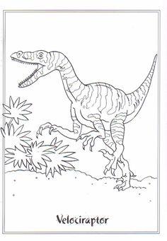 Kids-n-fun | Ausmalbild Dinosaurier 2 Velociraptor