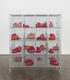 Mona Hatoum . cells, 2014