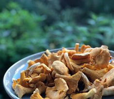 Chanterelle Pasta - Whether picking your own or buying locally, make use of natures beauties when in season. This is one of our favourite and very simple pasta recipe which is full of delicious flavours.