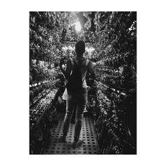 #marrakech #morocco #zoco #africa #market #mercado #souk #blackandwhite #blancoynegro #vsco #vscolovers #vscoedit #photooftheday #picoftheday #light #luz #woman #tourism #tourist #tea #teashop #teteras #tienda