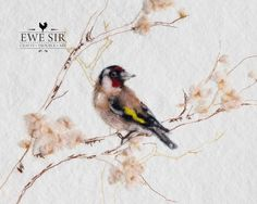 Goldfinch, european markings illustrated through embroidery and needle felting… Curious Creatures, Goldfinch, Needle Felting, Still Life, Wildlife, Cute Animals, Bird, Portrait, Boudoir