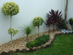 Browse images of modern Garden designs by VIVERO CUMBRES ELITE. Find the best photos for ideas & inspiration to create your perfect home. Alpine Garden, Front Yard Landscaping, Small Gardens, Garden Art, Landscape Design, Plants, House, Stucco Exterior, Grey Exterior