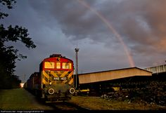 RailPictures.Net Photo: M44 402 Hungarian State Railways (MÁV) M44 at Herceghalom, Hungary by MVGY-RT Hungary, Train, Pictures, Image, Photos, Strollers, Trains, Resim, Clip Art
