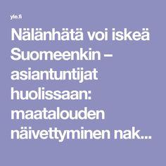 Nälänhätä voi iskeä Suomeenkin – asiantuntijat huolissaan: maatalouden näivettyminen nakertaa omaa leipäämme   Yle Uutiset   yle.fi