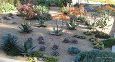 Linda Estrin Design :: Gardens +