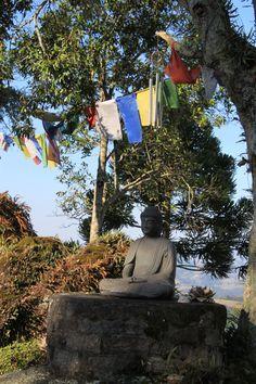 Tao Tien #buddhist #retreat