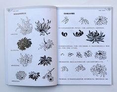 Chinese Painting Book Learn to Paint Chrysanthemum Oriental Asian Brush Ink Art Japan Painting, China Painting, Oriental Flowers, Chinese Patterns, Tinta China, China Art, Painted Books, Botanical Drawings, Floral Illustrations
