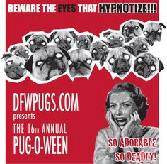 The DFW Pug Rescue has a Halloween event called Pug-O-Ween that is our biggest fundraiser of the year! Pug Rescue, Vintage Lettering, Cute Pugs, Pug Love, Dog Stuff, Fundraising, Best Dogs, Happy Halloween, Fur Babies