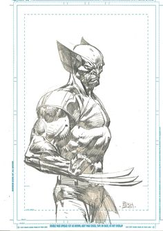 David Finch - Wolverine Comic Art
