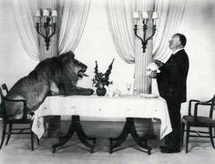 Alfred Hitchcock serving tea to Leo the Lion, MGM's mascot, 1958.