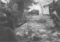 Stugs moving up at Arnhem 1944.