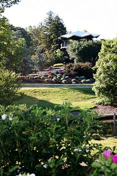 Azalea Gardens, Norfolk, Virginia