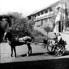 Annibale e Renata Germano sul biroccio in Villa a Sordevolo, sullo sfondo l'orangerie oggi conosciuta con il nome di La serra dei Leoni