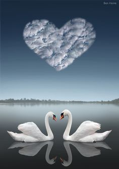 ✯ Together Forever .. By `BenHeine ✯