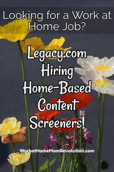 Legacy.com is seeking home-based content screeners in Indiana and Illinois. These are part-time home-based positions starting at $11.00 per hour. Awesome work at home position in IL or IA. If you\'re seeking a work from home job, this might be perfect for you! You can make money from home!